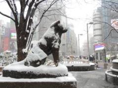 Hachiko cubierto de nieve en la estación de Shibuya de Tokyo en pleno invierno.